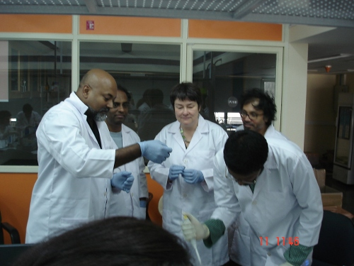 Tissue Workshop4.jpg